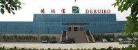 Deruibao Tire enters 'restructuring' proceedings