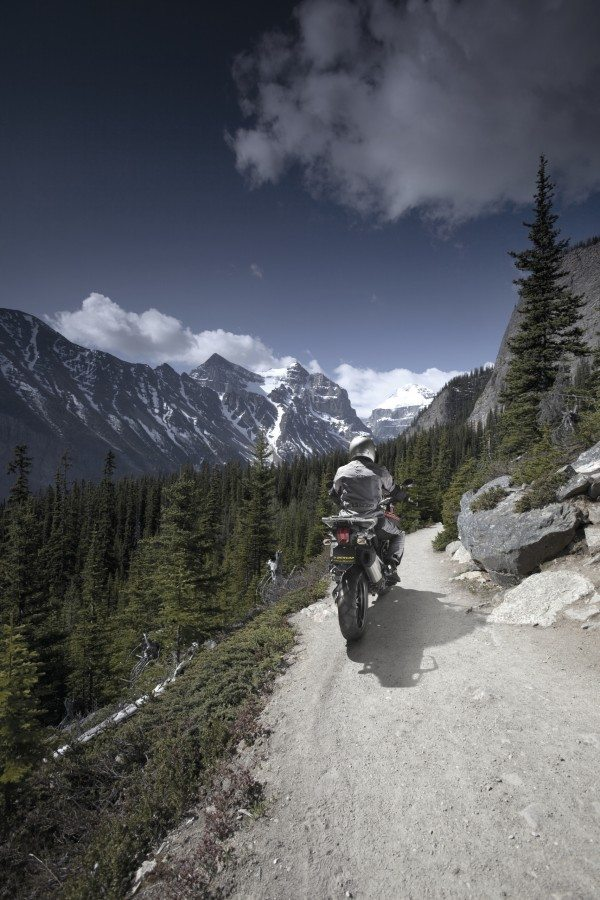 Trail bikes are enjoying greater popularity for both their off-road capabilities and the higher ride position, which gives on-road riders greater visibility