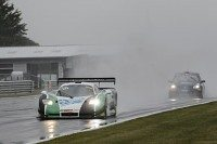 Mosler and Radical wins at Snetterton on Pirelli tyres