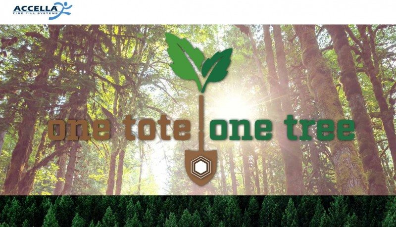 One Tote, One Tree – Accella reports on replanting project