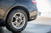 "Study: Guayule tyre performance ""at least equal"" to conventional rubbers"