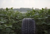 Goodyear using soybean oil-based rubber in tyres