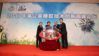 Linglong Tire setting up firm for dandelion rubber industrialisation