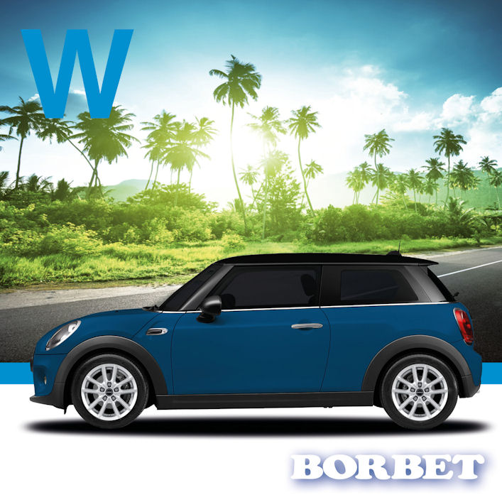 Borbet W-wheel for Mini