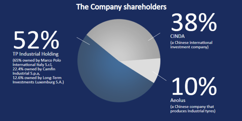 Prometeon share ownership pie chart